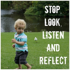 stop-look-listen-and-reflect-1